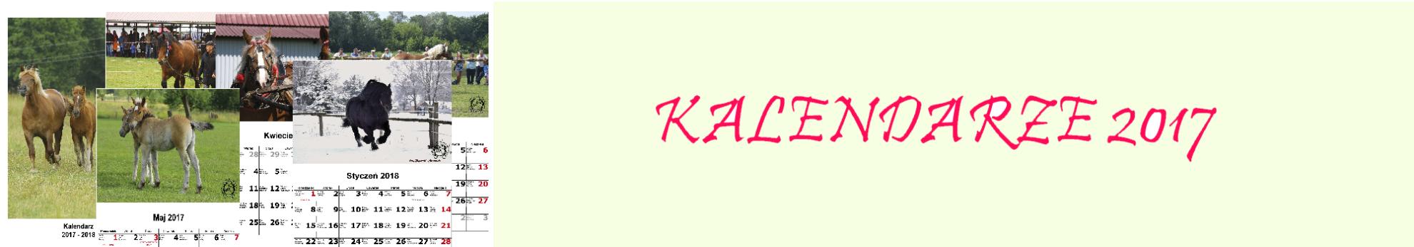 kal_baner1